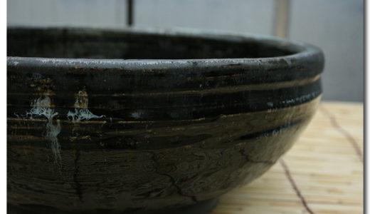メダカ飼育と水槽~色、素材、大きさ、季節。それぞれの特徴、注意点~
